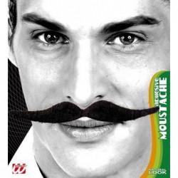 Moustaches Dali auto adhésives