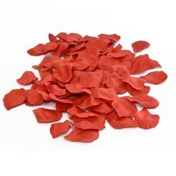 Pétales de roses rouges