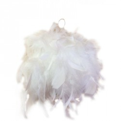 Boule de plume blanche...