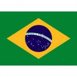 Pavillon Brésil 150x90cm
