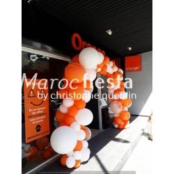 Décoration ballon  ( arche...